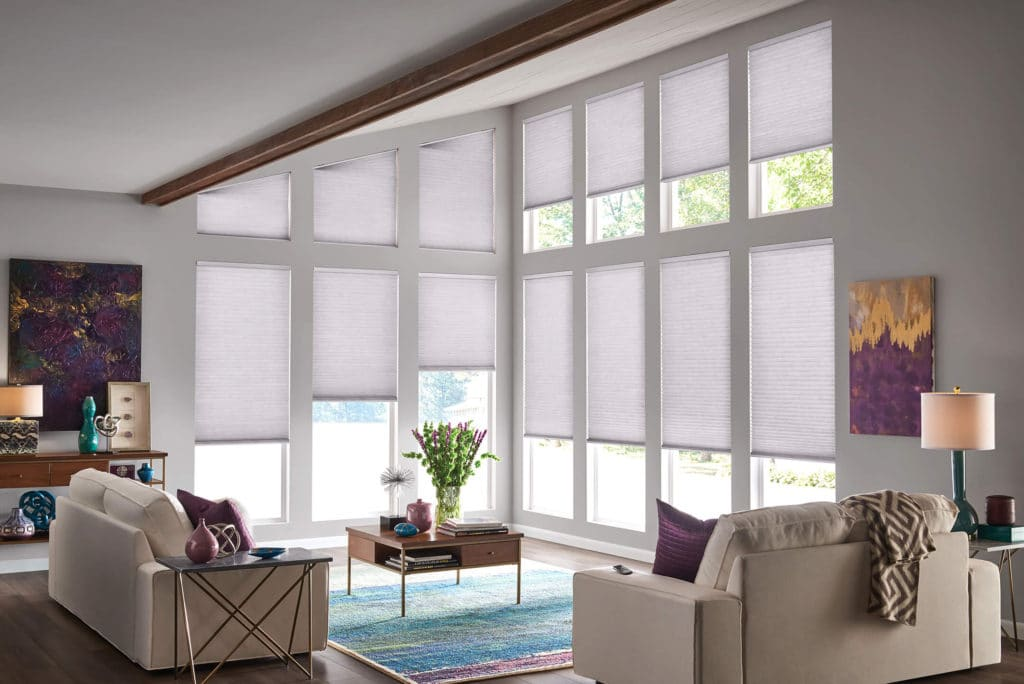 Blinds in Living room