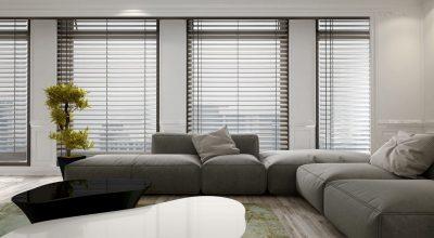 Blinds in modern living room